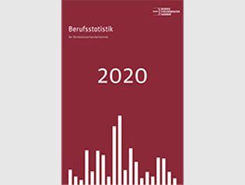 Berufsstatistik 2020